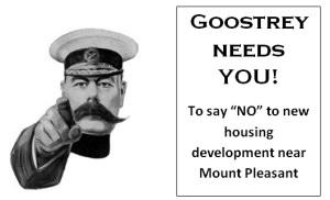 Mt Pleasant flyer