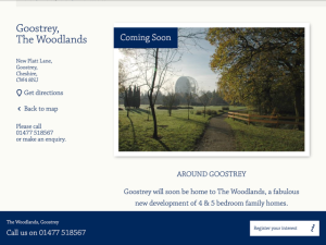 The Woodlands ad 2